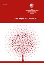 sme-report-2011